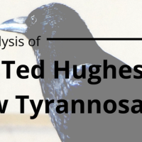 Analysis of Ted Hughes' 'Crow Tyrannosaurus'